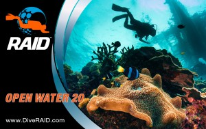 C-Card_OpenWater20_10