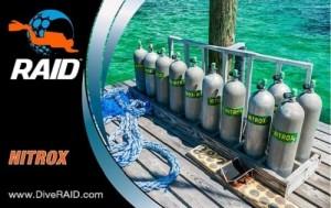 Dive-RAID-Nitrox-Diver-1